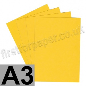 Rapid Colour Paper, 120gsm,  A3, Goldcrest Yellow
