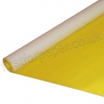 EduCraft Poster Paper Roll, 760mm x 10mtr, Yellow