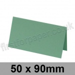 Rapid Colour Card, Pre-creased, Place Cards, 240gsm, 50 x 90mm, Lark Green